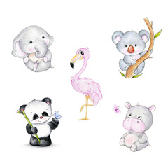 Set of wild animals: flamingo, elephant, koala, hippopotamus, panda,