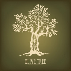 Olive tree on vintage paper. Olive oil. Vector olive tree. For labels, pack.