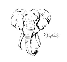 Hand drawn vector abstract artistic ink textured graphic sketch drawing illustration of wildlife indian elephant head isolated on white background
