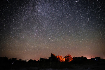 Background of bright starry night sky with lights upon on it and silhouette of trees