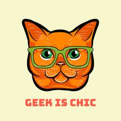 Cartoon smart red cat in glasses. Geek is chic. .