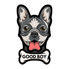 Pug face and bone. Good boy - lettering.  illustration