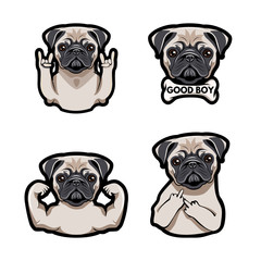 Icon with pug dog with gestures.  illustration.