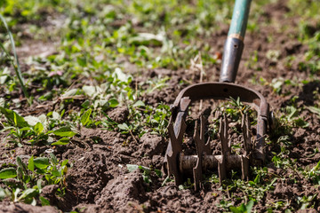 Star hand cultivator to work the soil, weed the garden. The concept of spring gardening
