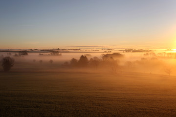 Sunrise landscape with fog and trees