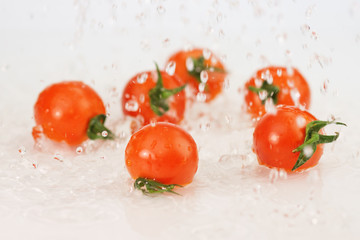 Tomatoes with water splash on wite.