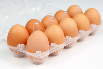 chicken eggs in a box on a white background