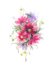 Delicate flower Cosmos. Decorative bouquet with flower Cosmos. Watercolor background.