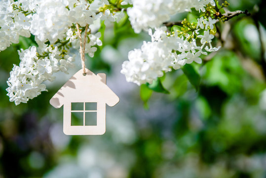 The symbol of the house among the branches of the white lilac