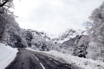 Snowy road in nature