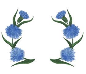 Blue cornflower flowers watercolor floral pattern