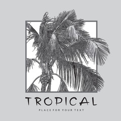 Tropical сoconut palm tree with leaves close-up. Monochrome realistic vector illustration. Pattern, design element for summer holiday, travel and vacation concept.