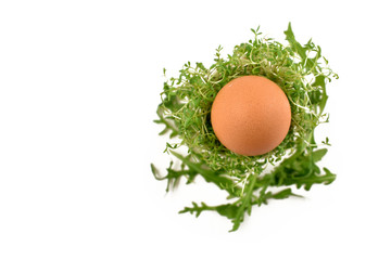 Easter eggs decoration stock images. Spring floral decoration. Spring decoration on a white background. Easter egg with cress