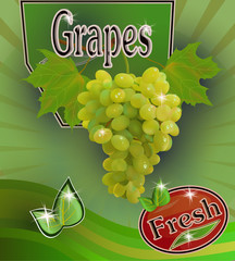Vector illustration of advertising drinks from grapes. Fresh grapes juice Banner.