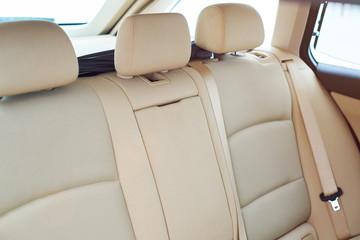 Brown back car seat