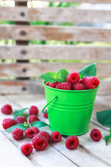 fresh raspberries in the bucket