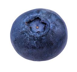 Fresh blueberries isolated on white, background