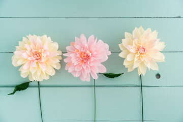 Three crepe paper dahlias on turquoise wooden background