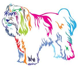 Colorful decorative standing portrait of Tibetan Terrier vector illustration