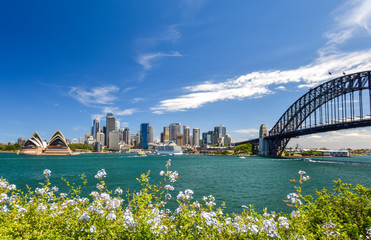 Foto op Canvas Sydney Stunning wide angle city skyline view of the Sydney CBD harbour area at Circular Quay with the opera and the harbour bridge. Seen from Dr Mary Booth Lookout in Kirribilli, Sydney, Australia.