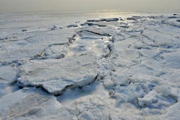 On winter sea ice