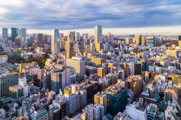 Urban sunset view of Tokyo