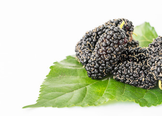 Mulberry with green leaf on the white