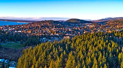 Forest View Bellingham Washington Fairhaven Neighborhood