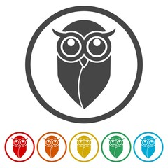 Owl icon, Owl logo, Owl illustration, 6 Colors Included