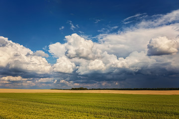 Storm sky over agricultural fields.