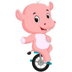 cute happy hippopotamus riding unicycle