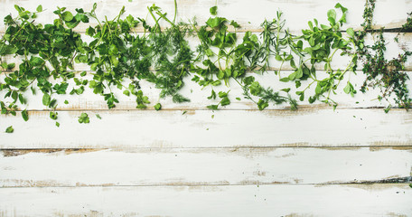 Flat-lay of various fresh green herbs. Parsley, mint, dill, cilantro, rosemary, thyme over rustic white wooden background, top view, copy space. Healthy vegan cooking concept