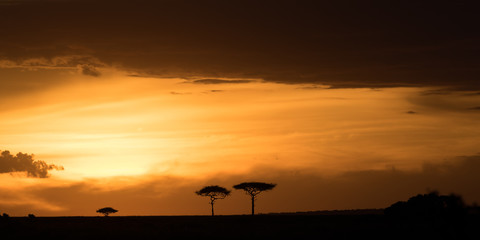 Masai Mara at sunset, Kenya, East Africa, Africa