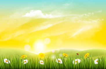 Spring nature background with grass and flowers. Vector.