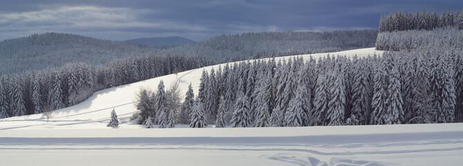 Scenic view of Ski track Thurnerspur in the Black Forest near St. Märgen, Hochschwarzwald, Baden-Württemberg, Germany