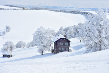 Mountain wooden cabin near trees full of snow