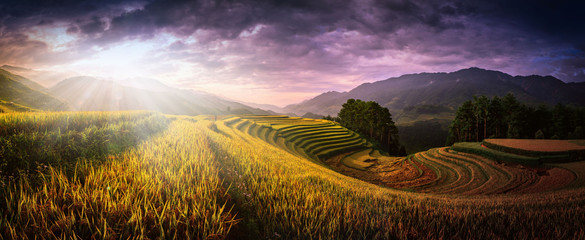 Wall Murals Rice fields Rice fields on terraced with wooden pavilion at sunset in Mu Cang Chai, YenBai, Vietnam.