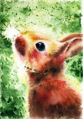 Cute fluffy brown bunny looks at a white dandelion on a green background, painted by hands with watercolor, poster, illustration, picture, postcard, realistic painting