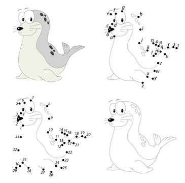 Cartoon fur seal. Coloring book and dot to dot game for kids