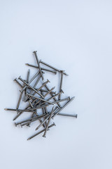 Pile of wood nails on a solid background