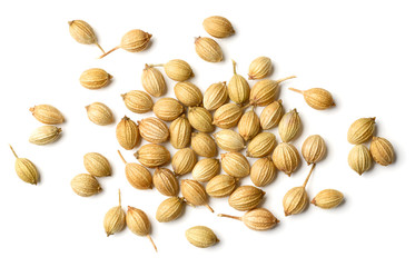 closeup of dried coriander seeds isolated on white, top view