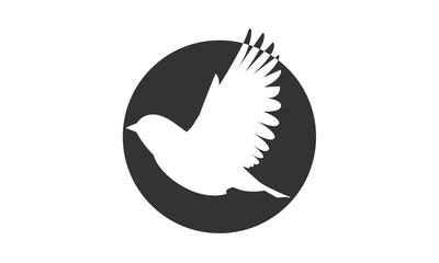 Flying Bird Vogel Im Flug Vektor Logo