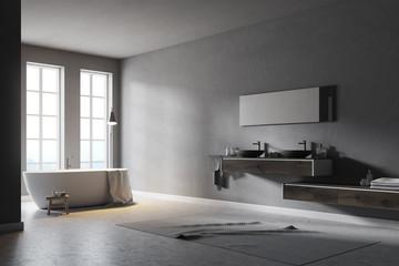 Modern gray bathroom corner