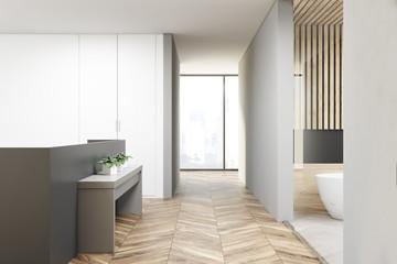 Modern apartment interior, bahtroom