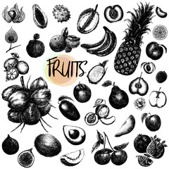 Hand drawn sketch style set of fruits isolated on white background. Vector illustration.