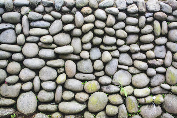 Exterior Pebble Stone Wall with Weed and Moss Grow On it. Texture Background.
