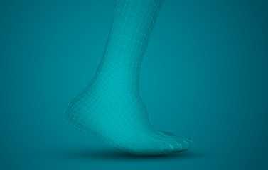 3d illustration of a vector of human feet walking along