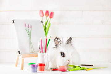 Fluffy funny Easter Bunny about the picture with spring tulips
