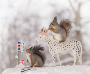red squirrels with traffic light and horse
