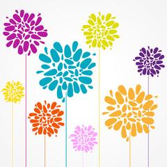 affiche fleurs colorés